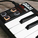 Akai LPK25 Midi-Keyboard - 5